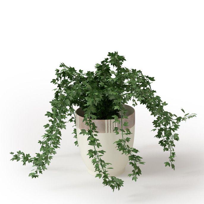 Plant 22 Archmodels vol  66