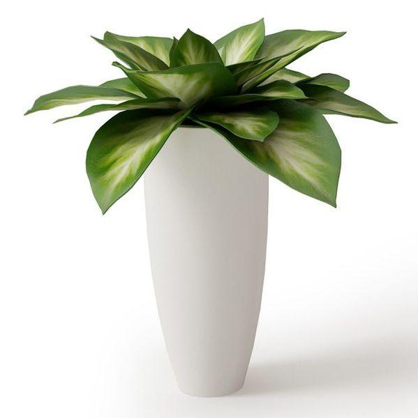 Plant 05 Archmodels vol. 66 image 0