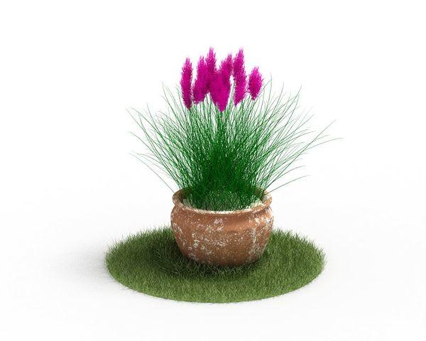 Plant 63 AM04 C4D image 0