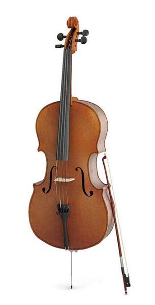 Cello 13 AM67 image 0