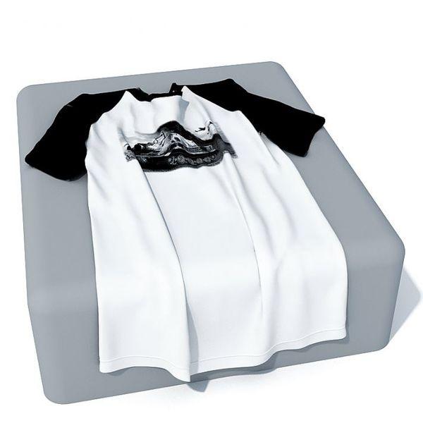 Cloth 51 AM30 image 0