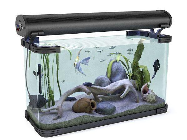 aquarium 02 am83 image 0