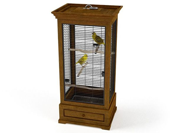 canary cage 05 am83 image 0