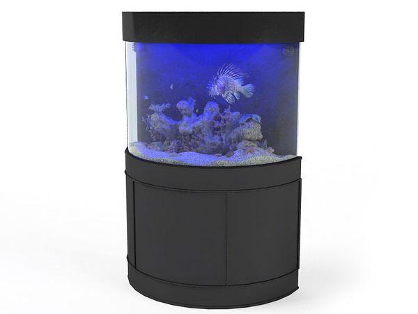 aquarium 03 am83 image 0
