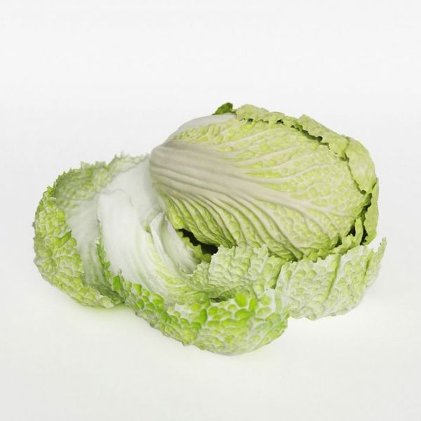 cabbage 31 am130 Image 1