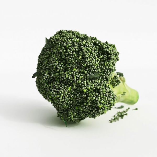 broccoli 32 am130 Image 1