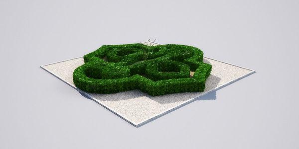 hedge 19_02 AM148 Image 1