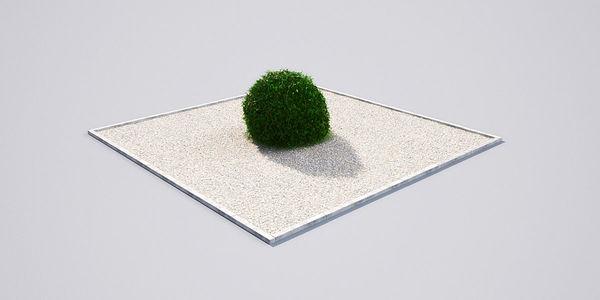 hedge 19_04 AM148 Image 1