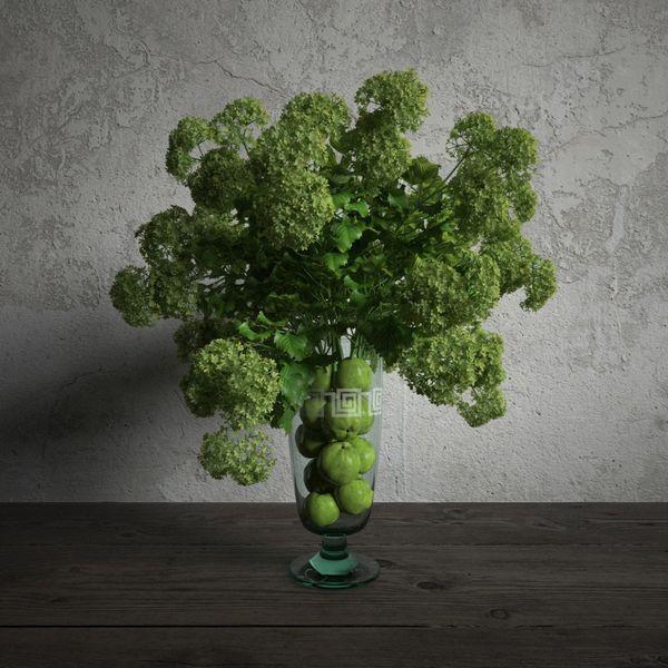 plant 01 am173 Image 1