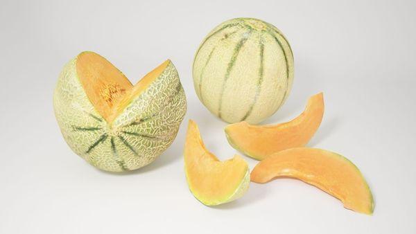 VP Cantaloupe melon