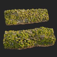 3d scanned nature stone wall D