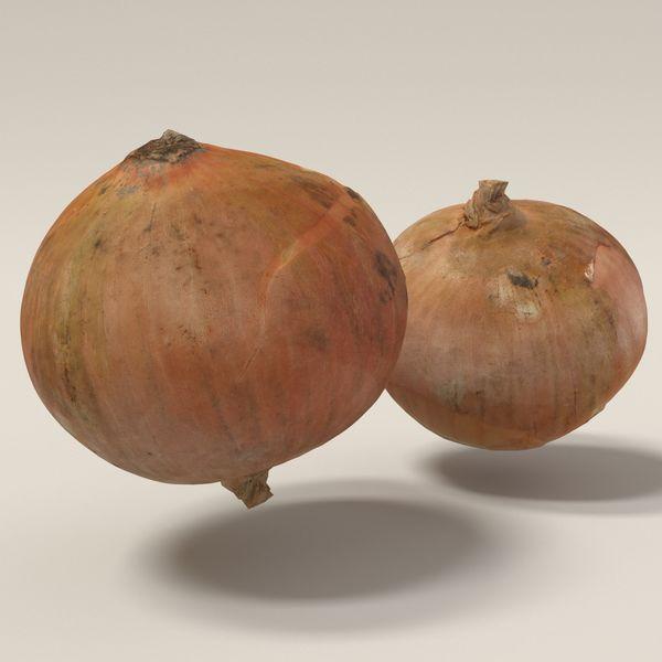 onion 3d scanned