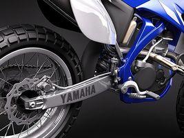 Yamaha YZ450F offroad 2009 2788_4.jpg