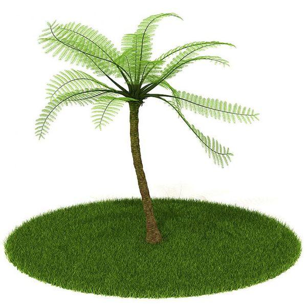 Plant 15 AM42 image 0