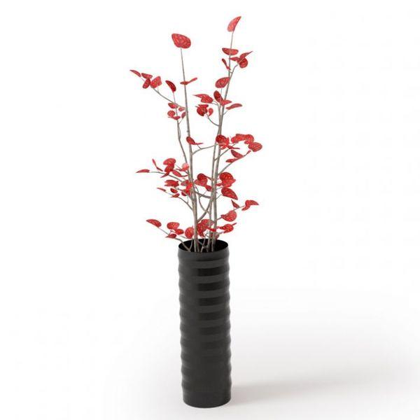 Plant 50 Archmodels vol. 66 image 0